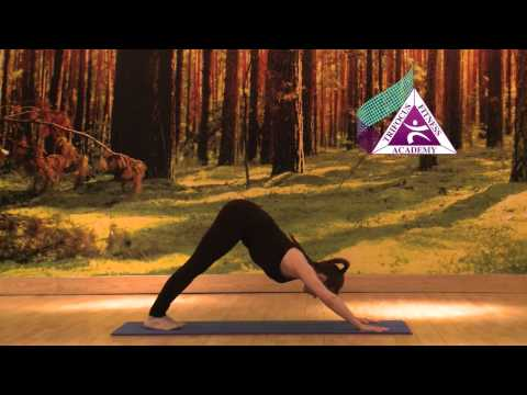Yoga Eka Pada Adho Mukha Svanasana (One Legged Downward Facing Dog Pose)