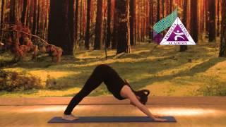 Yoga - Eka Pada Adho Mukha Svanasana (One Legged Downward Facing Dog Pose)
