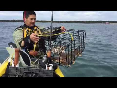 Kayak Crabbing For Dungeness - Winchester Bay