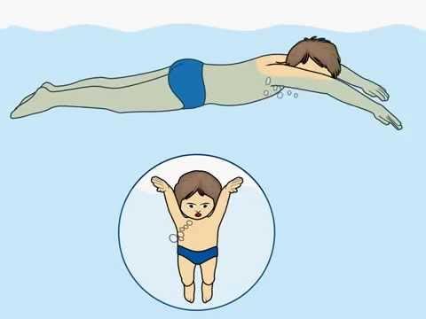 Brustschwimmen - Schritt