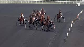 Vidéo de la course PMU PRIX DE RIBERAC