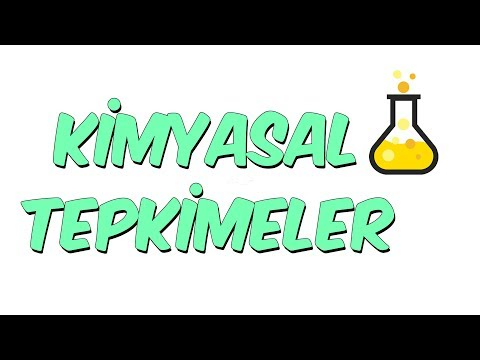 Kimyasal Tepkimeler  | 8.1 Kampı