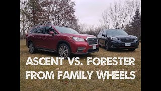 2019 Subaru Ascent vs. Forester by Family Wheels