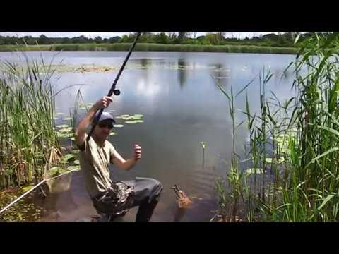 ловля крупного линя на поплавочную удочку