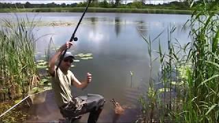 Летняя рыбалка на поплавочную удочку. Ловля линя.(Летняя рыбалка на поплавочную удочку. Ловля линя.Классическая рыбалка на удочку . рыбалка на удочку с попла..., 2016-07-08T18:36:36.000Z)