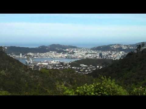 View to Wellington from Mount Kaukau, New Zealand