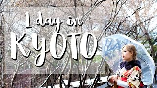 Things to do in Kyoto - Kyoto 1 day Itinerary