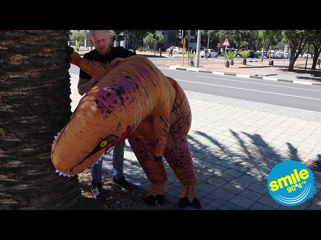 Lindysaurus