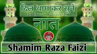 नाम मैंने  जब मोहम्मद मुस्तफा का लेलिया Naat E Rasool In Urdu By Shamim Raza Faizi Naat Shareef 2018