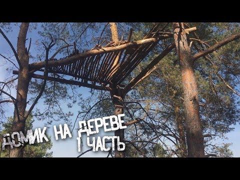 Вопрос: Как построить дом на дереве?