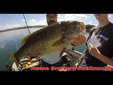 5lb smallmouth bass smashes a spoon on blue ridge lake for Lake blue ridge fishing