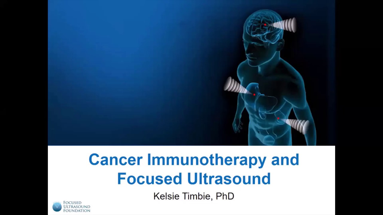 Kelsie Timbie, PhD: Cancer Immunotherapy and Focused Ultrasound