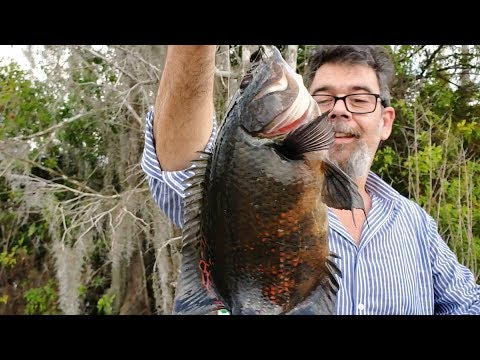 Fishing For Exotics In The Florida Everglades - You Won't Believe How Much Fish Is Out There!