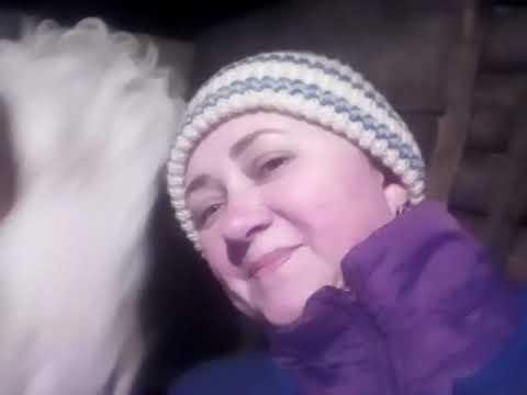 Зима-крестьянин торжествует)) Коза погуляла#мороз