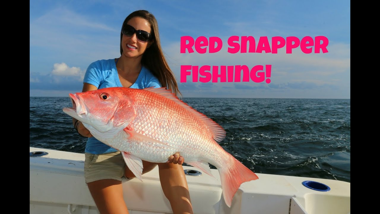 Best of venice louisiana red snapper fishing part 1 youtube for Fishing with luiza
