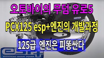 [자가정비]#254 오토바이의 무덤 유로5 / pcx125 esp 엔진의 개발과정 / 엔지니어와 엔진 둘다 피똥싼다