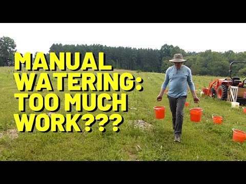 #152 Is Manual Watering Too Much Work? Is It Worth The Effort?