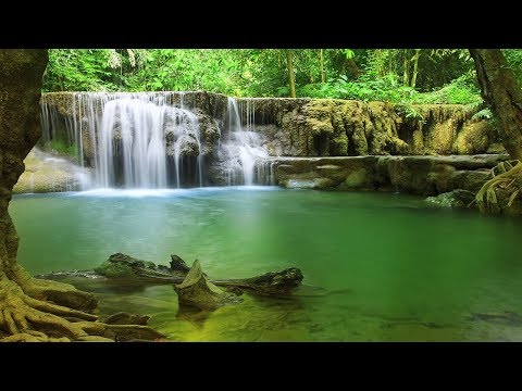 Healing Music, Meditation Music Relax Mind Body, Relaxing Music, Slow Music, ☯3321