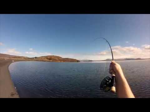Dry fly fishing - Lake Þingvallavatn / Thingvallavatn