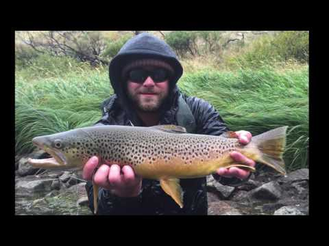 Yellowstone Fly Fishing Trip 2016