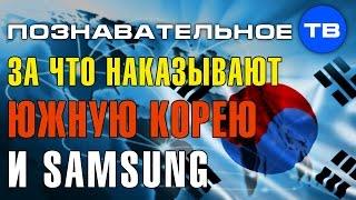За что наказывают Южную Корею и Самсунг? (Познавательное ТВ, Артём Войтенков)