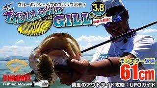 【バス釣り】ロクマル登場!ベローズギルで攻める夏のアウトサイド攻略(琵琶湖:UFOガイド)