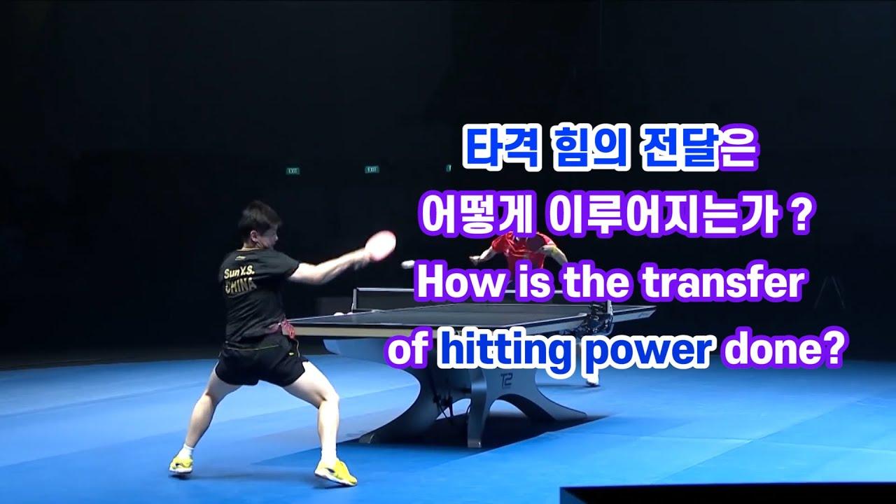 타격 힘의 전달은 어떻게 이루어지는가? How is the transfer of hitting power done?