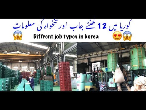 Different jobs types in Korea | pakistan zindabaad |