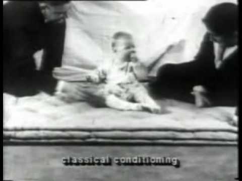 Experimento Conductista: Watson y el pequeño Albert (en español)