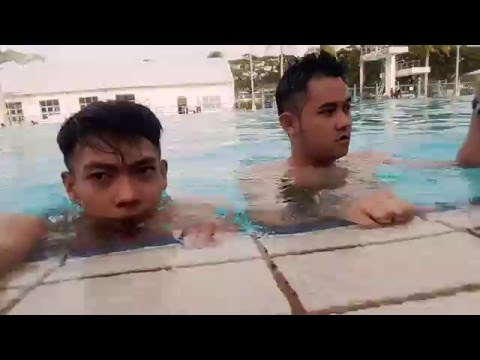 Swimming foll gay