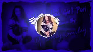 Hyderabad galli pori New Telugu Dj Song