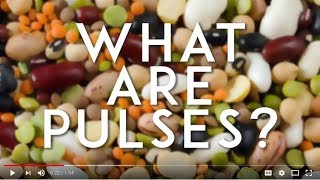 What are Pulses?