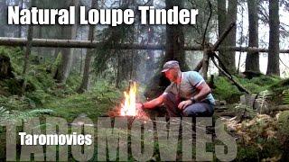 Natural Loupe Tinder/hd