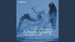 Play Schwanengesang, S. 560 (After Schubert's D. 957) No. 10, Liebesbotschaft