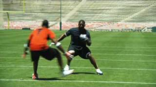 Spin Move (LaDainian Tomlinson)