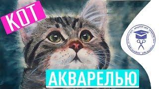 Как Нарисовать Мордочку Кошки 🐱 Как Нарисовать Кошку Акварелью