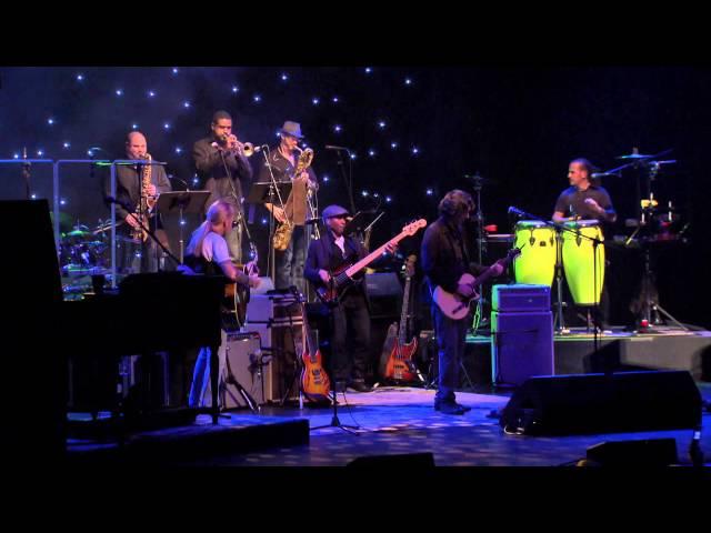 Gregg Allman LIVE -