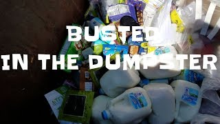 SCRAP DOGS DUMPSTER DIVING DAILY VIDEO #57