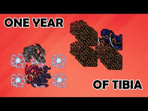 One Year of Tibia