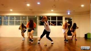 EvoL - We Are A Bit Different (dance practice) DVhd