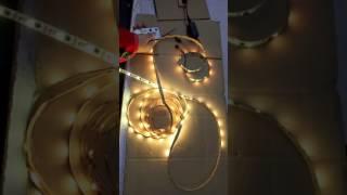 WS2811 LED STRIP LIGHTS   Libby Chen