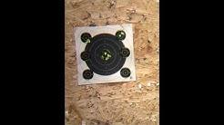 Cz455 22 Ammo Testing: Eley, Lapua, Federal Gold Medal, Wolf, CCI