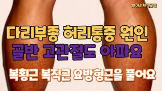 다리부종과 허리통증 원인. 골반 고관절이 아파요