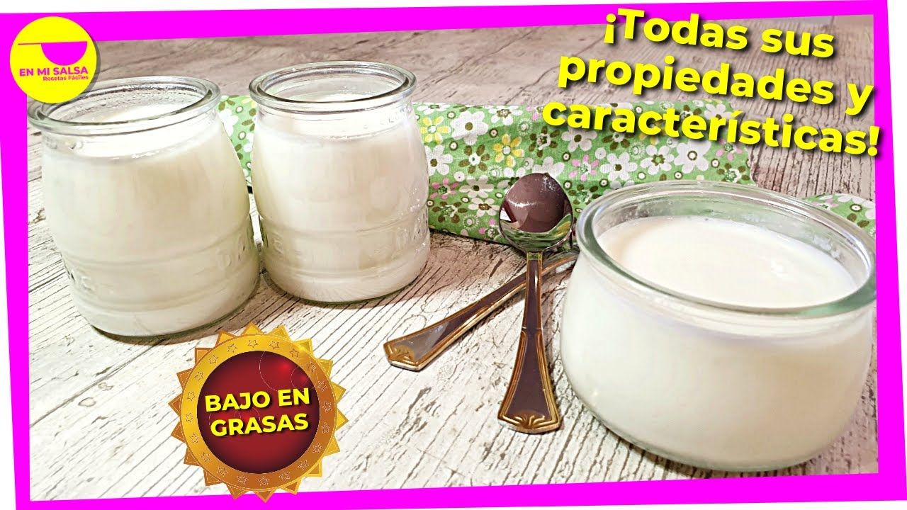 Cómo Hacer El Mejor Yogur Casero Sin Yogurtera Con 2 Ingredientes Bajo En Grasa Y Saludable Youtube