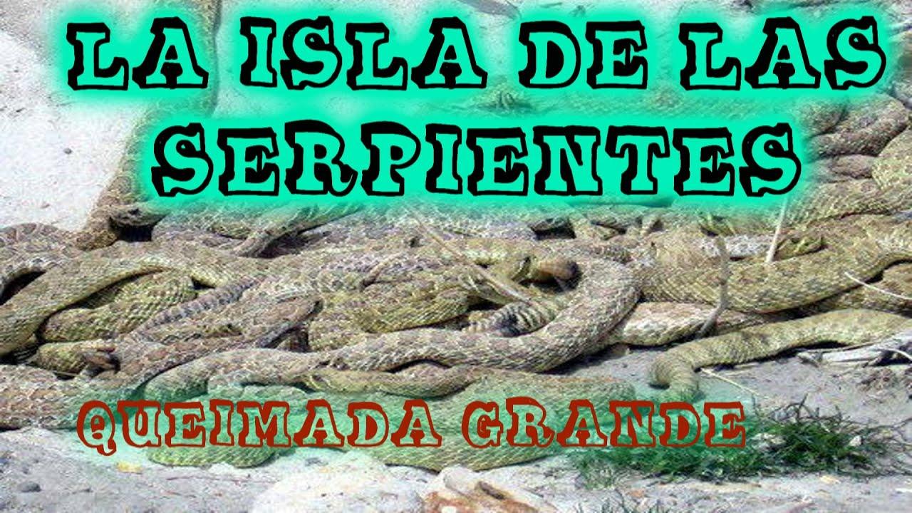 La terrible espeluznante y mortifera isla de las - La isla dela cartuja ...