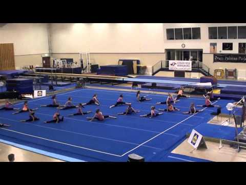 Counties Manukau Gymnastics Display - Silver, Black, Blue, Red Groups