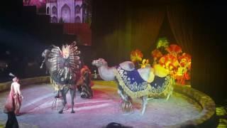 Цирк-шоу «Аста Ла Виста» Джигитовка на верблюдах
