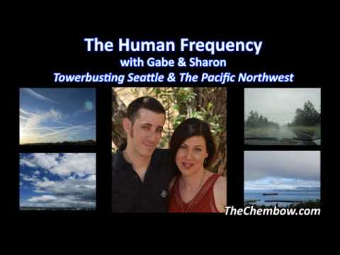 Towerbusting Seattle & the Pacific Northwest