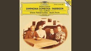 R. Strauss: Sinfonia Domestica, Op.53 - Part 1: Theme (Bewegt - Sehr lebhaft - Ruhig)