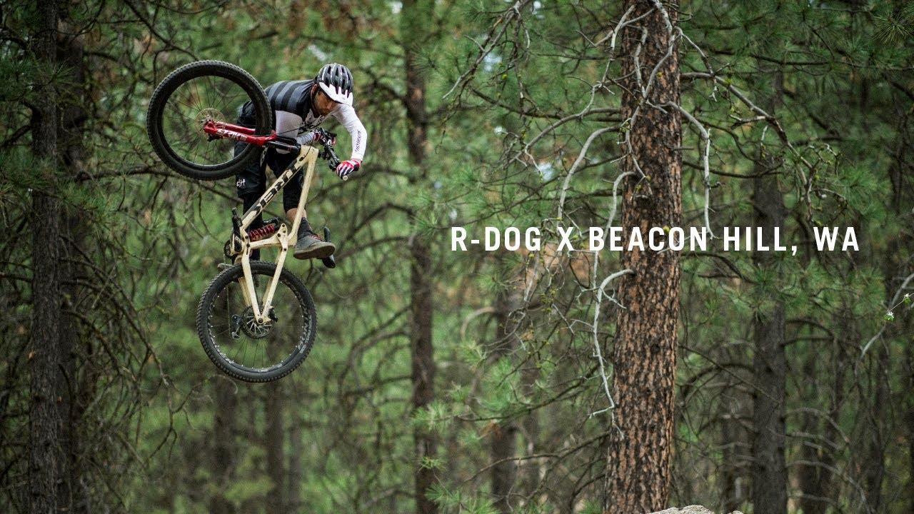 R-Dog x Beacon Hill, WA